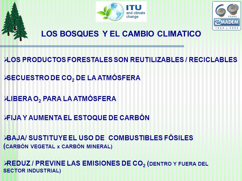 LOS BOSQUES Y EL CAMBIO CLIMATICO LOS PRODUCTOS FORESTALES SON REUTILIZABLES / RECICLABLES SECUESTRO DE CO 2 DE LA ATMÓSFERA LIBERA O 2 PARA LA ATMÓSFERA FIJA Y AUMENTA EL ESTOQUE DE CARBÓN BAJA/ SUSTITUYE EL USO DE COMBUSTIBLES FÓSILES ( CARBÓN VEGETAL x CARBÓN MINERAL) REDUZ / PREVINE LAS EMISIONES DE CO 2 ( DENTRO Y FUERA DEL SECTOR INDUSTRIAL)
