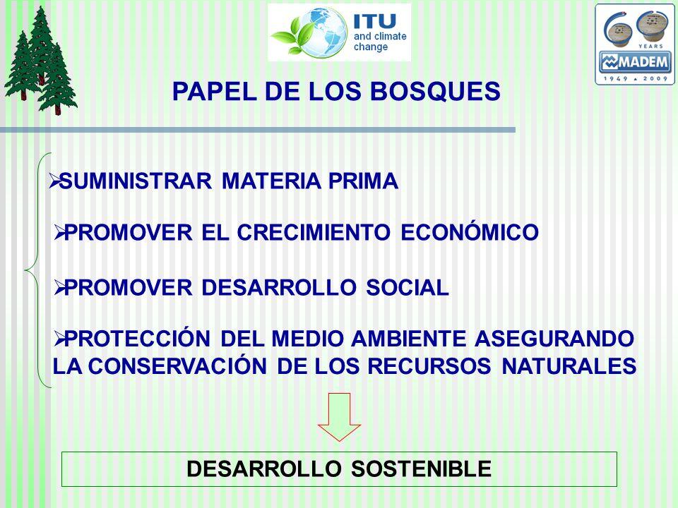 PAPEL DE LOS BOSQUES SUMINISTRAR MATERIA PRIMA PROMOVER EL CRECIMIENTO ECONÓMICO PROMOVER DESARROLLO SOCIAL PROTECCIÓN DEL MEDIO AMBIENTE ASEGURANDO LA CONSERVACIÓN DE LOS RECURSOS NATURALES DESARROLLO SOSTENIBLE