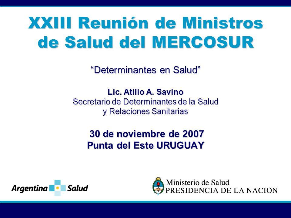 XXIII Reunión de Ministros de Salud del MERCOSUR Determinantes en Salud Lic.