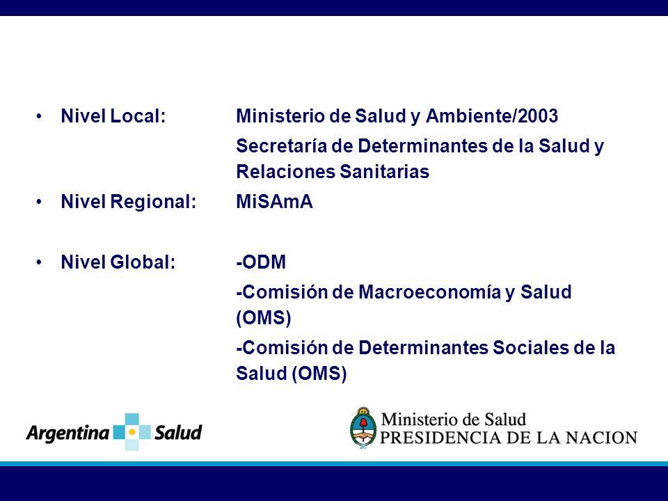 Nivel Local: Ministerio de Salud y Ambiente/2003 Secretaría de Determinantes de la Salud y Relaciones Sanitarias Nivel Regional: MiSAmA Nivel Global: -ODM -Comisión de Macroeconomía y Salud (OMS) -Comisión de Determinantes Sociales de la Salud (OMS)