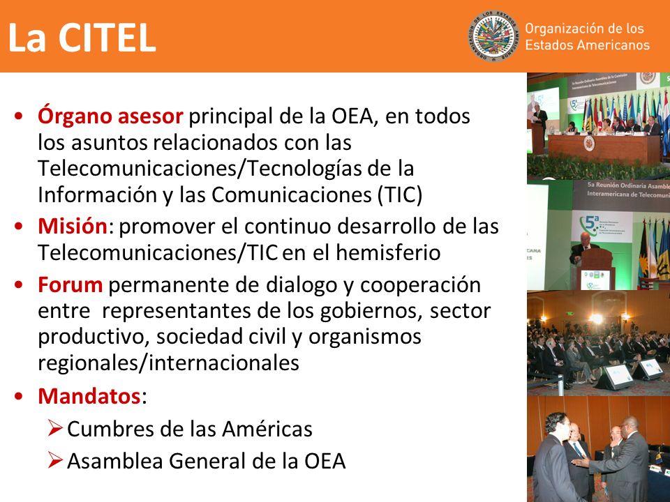 Órgano asesor principal de la OEA, en todos los asuntos relacionados con las Telecomunicaciones/Tecnologías de la Información y las Comunicaciones (TI