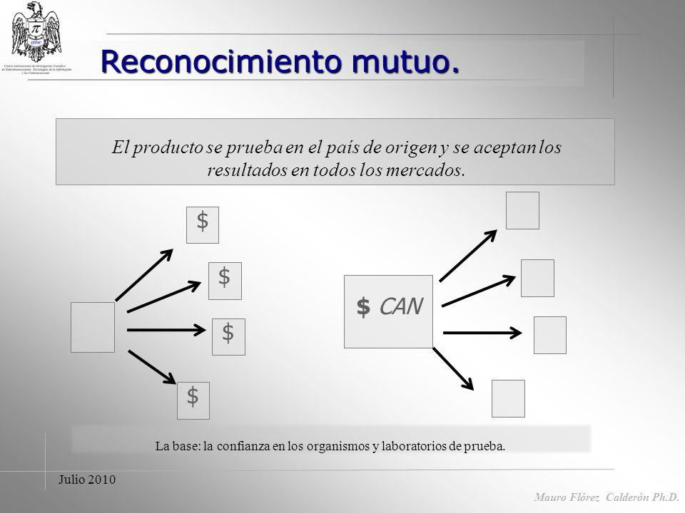 Mauro Flórez Calderón Ph.D Costos reglamentos divergentes Costos. Pérdida economía de escala Adaptación instalaciones a diferentes reglamentos. Costos