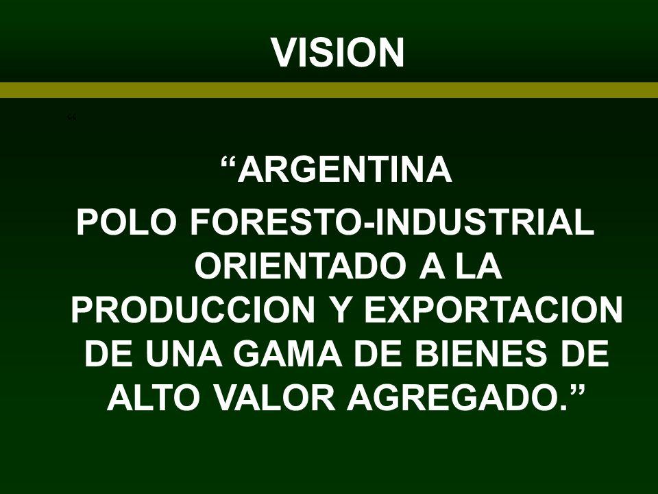 VISION ARTICIPANTES ARGENTINA POLO FORESTO-INDUSTRIAL ORIENTADO A LA PRODUCCION Y EXPORTACION DE UNA GAMA DE BIENES DE ALTO VALOR AGREGADO.