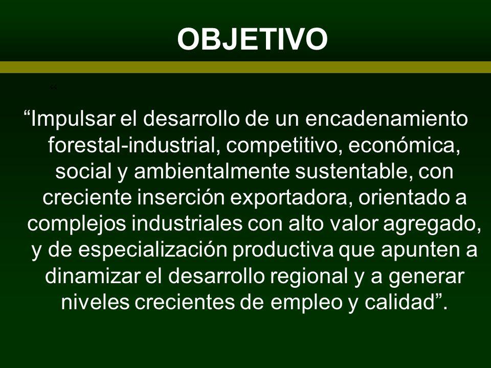 OBJETIVO ARTICIPANTES Impulsar el desarrollo de un encadenamiento forestal-industrial, competitivo, económica, social y ambientalmente sustentable, co