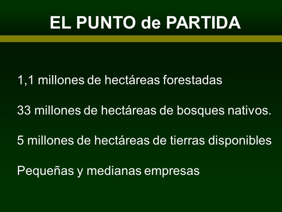 EL PUNTO de PARTIDA ARTICIPANTES 1,1 millones de hectáreas forestadas 33 millones de hectáreas de bosques nativos. 5 millones de hectáreas de tierras