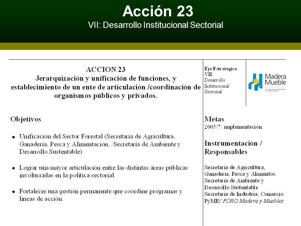 Acción 23 VII: Desarrollo Institucional Sectorial