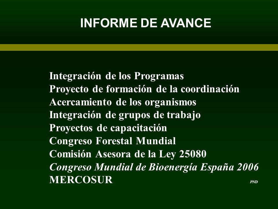 INFORME DE AVANCE Integración de los Programas Proyecto de formación de la coordinación Acercamiento de los organismos Integración de grupos de trabaj