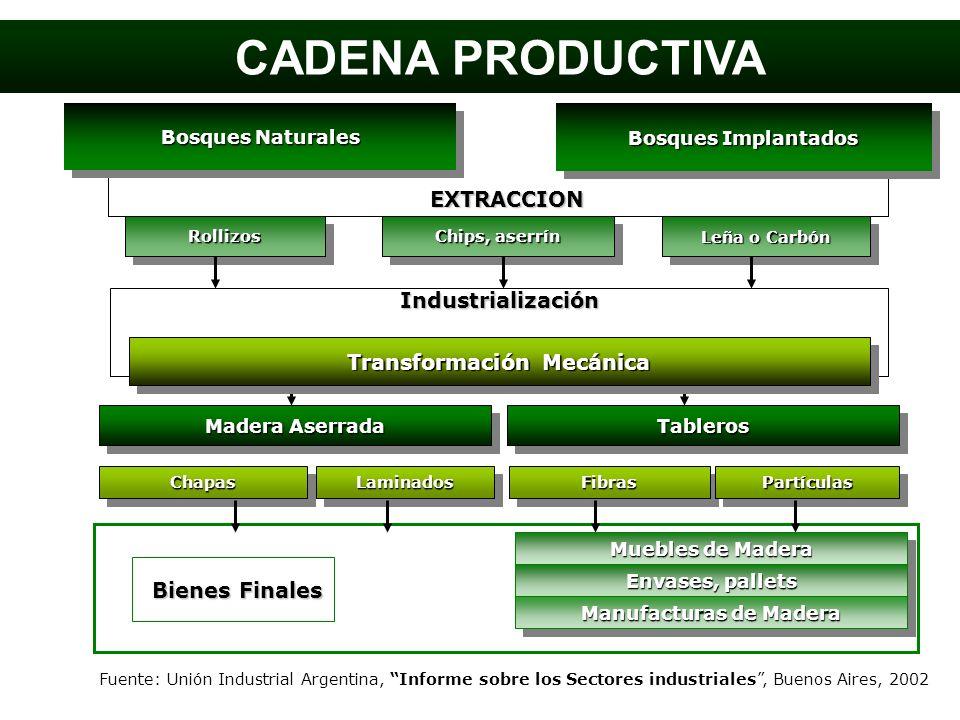 Bosques Naturales Bosques Implantados EXTRACCION RollizosRollizos Chips, aserrín Leña o Carbón Industrialización Transformación Mecánica Madera Aserra