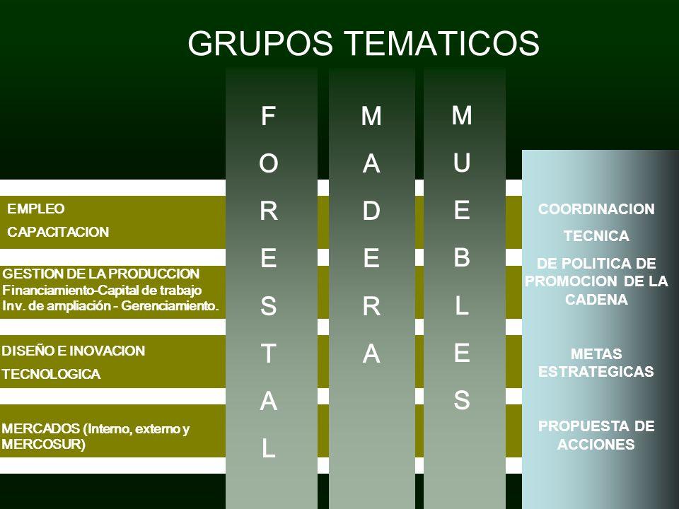GRUPOS TEMATICOS FORESTALFORESTAL MADERAMADERA MUEBLESMUEBLES EMPLEO CAPACITACION GESTION DE LA PRODUCCION Financiamiento-Capital de trabajo Inv. de a