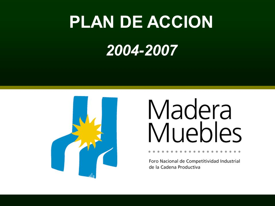 PLAN DE ACCION 2004-2007