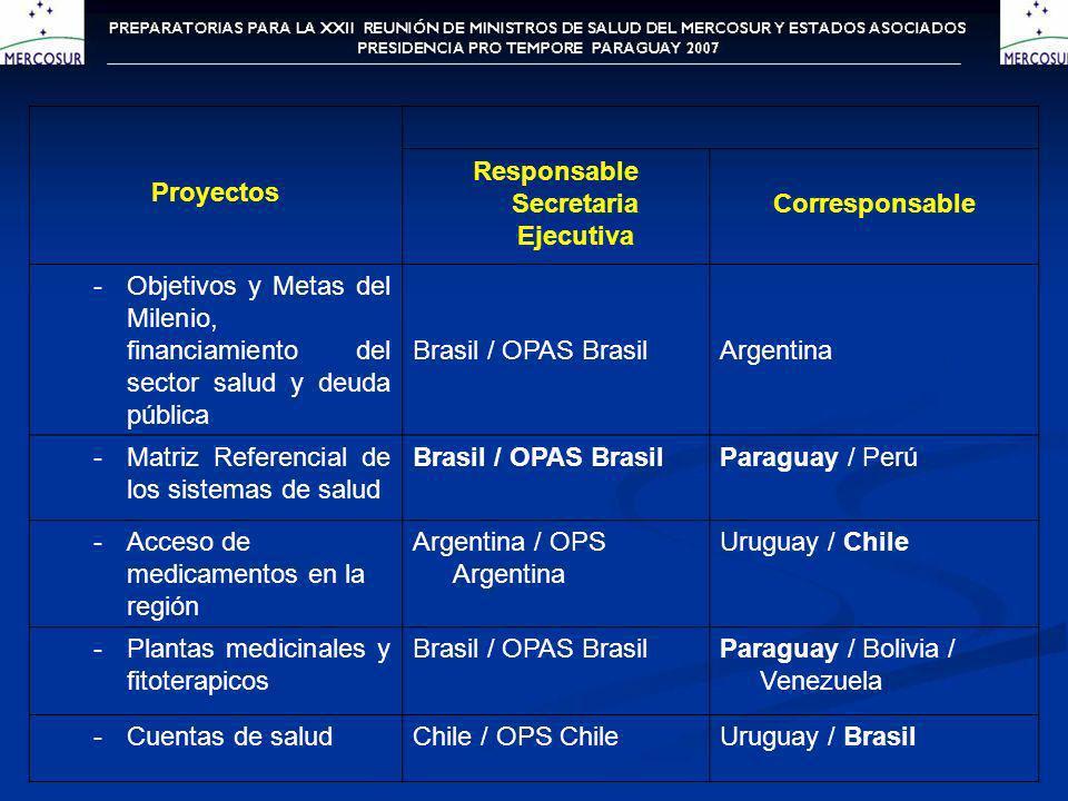 Proyectos Responsable Secretaria Ejecutiva Corresponsable -Objetivos y Metas del Milenio, financiamiento del sector salud y deuda pública Brasil / OPA