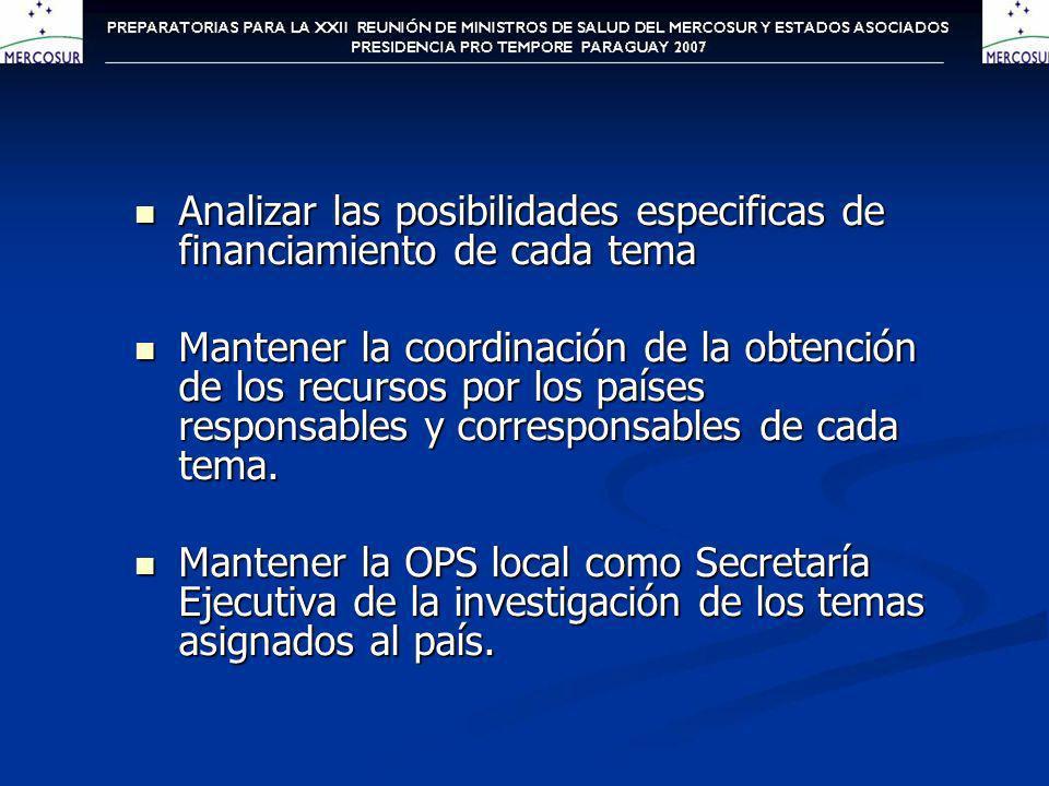 Cuentas de Salud Para abordar la puesta en marcha del proyecto Cuentas de Salud, se contó con la participación del responsable de la coordinación técnica del tema a cargo de la representación de Chile el Sr.