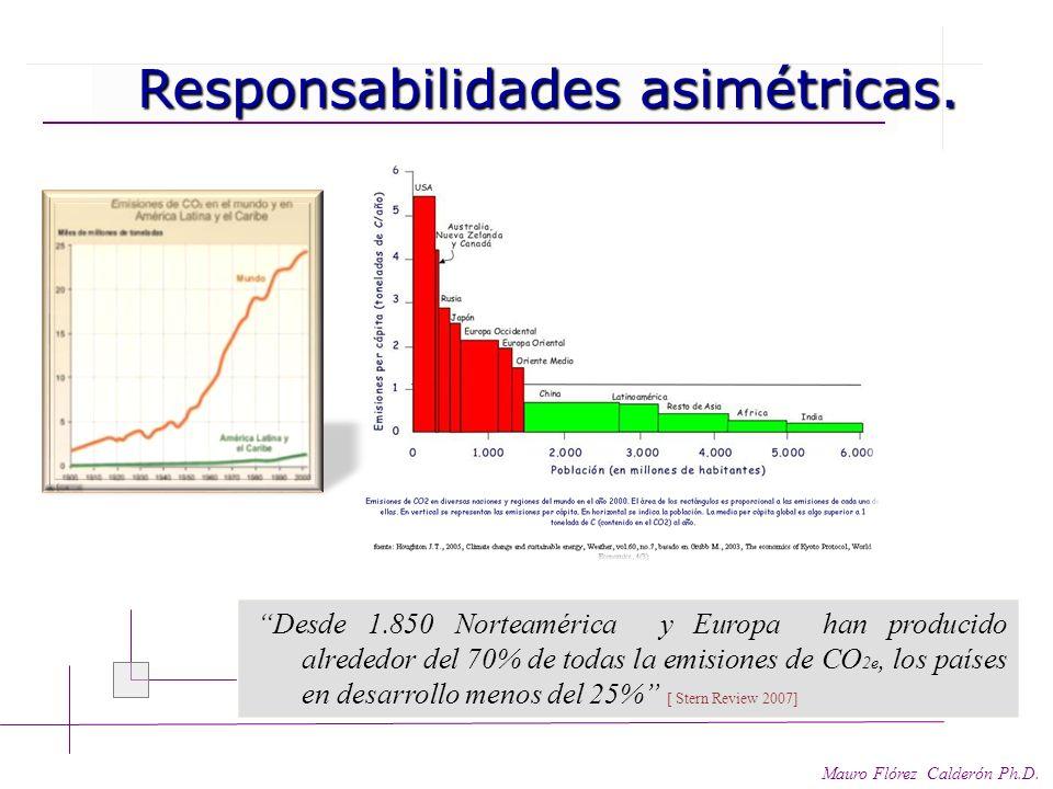 Responsabilidades – protocolos - financiación