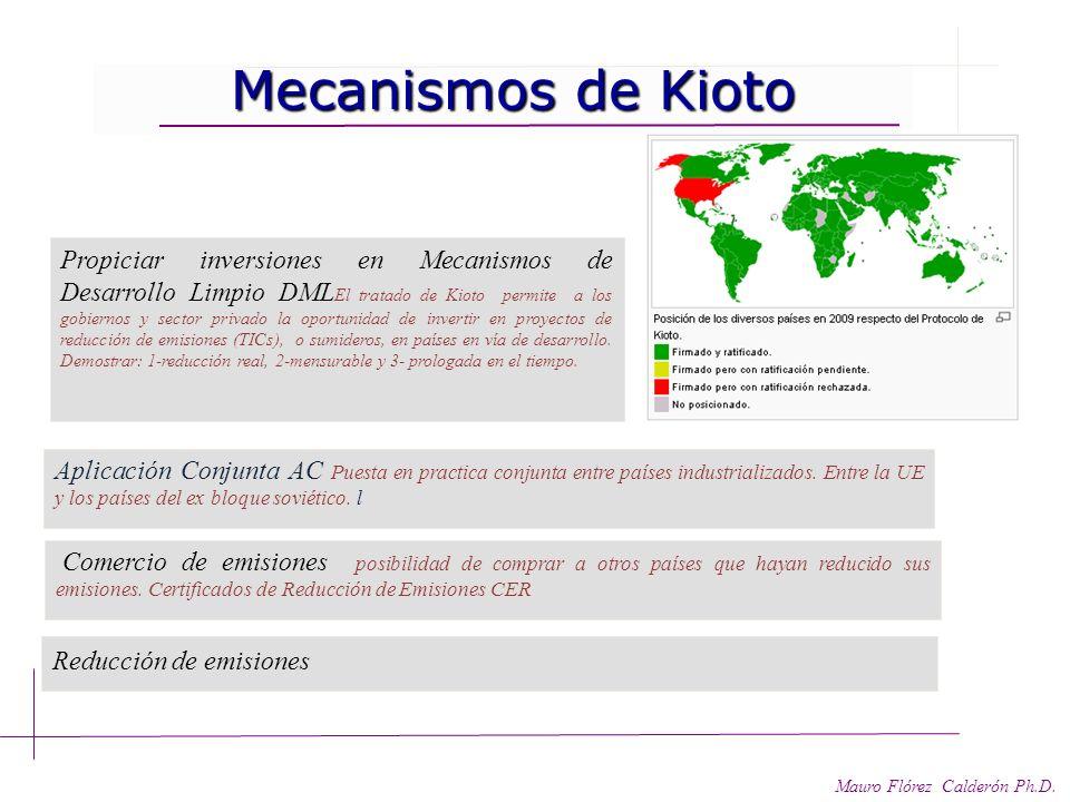 Responsabilidades asimétricas. Responsabilidades asimétricas. Mauro Flórez Calderón Ph.D.