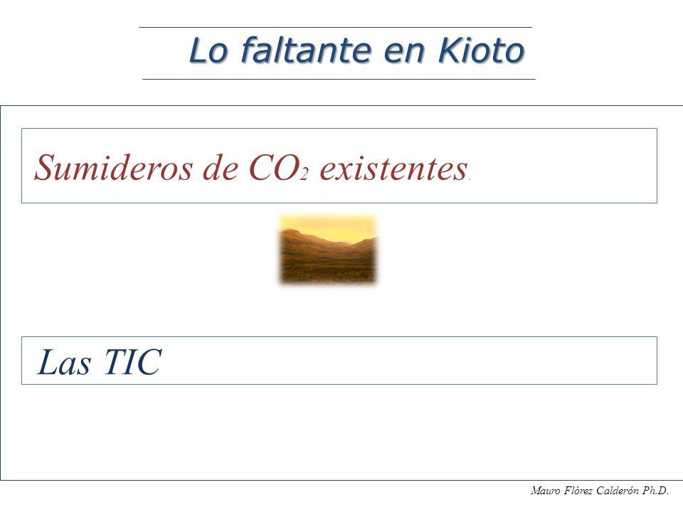 Mauro Flòrez Calderón Ph.D. Ejemplo caso: Modelo Yasuní Inversión programas sociales con control social : educación, salud y generación sustentable de