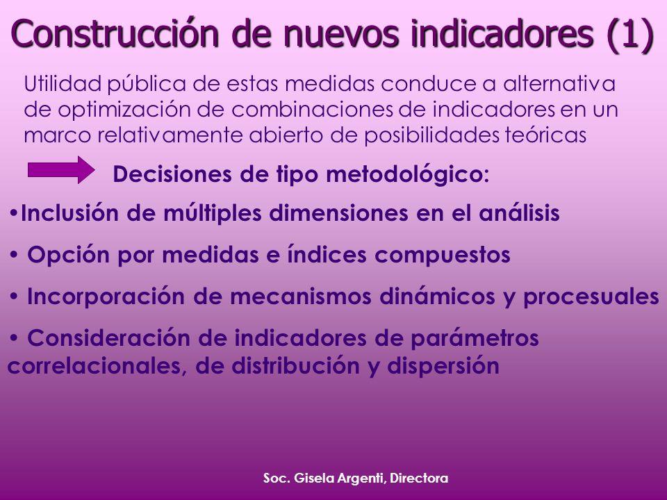 Soc. Gisela Argenti, Directora Construcción de nuevos indicadores (1) Utilidad pública de estas medidas conduce a alternativa de optimización de combi
