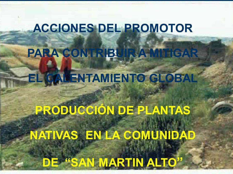 ACCIONES DEL PROMOTOR PARA CONTRIBUIR A MITIGAR EL CALENTAMIENTO GLOBAL PRODUCCIÓN DE PLANTAS NATIVAS EN LA COMUNIDAD DE SAN MARTIN ALTO