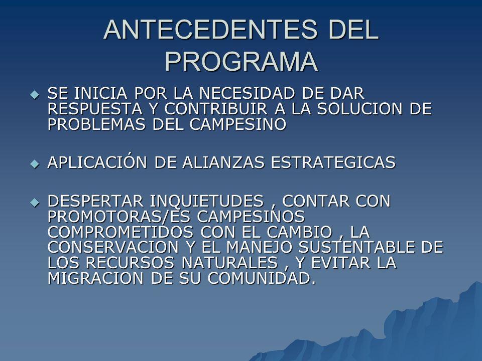 FORTALEZAS BUENA PREDISPOSICION Y ACEPTACION DE PARTICIPANTES BUENA PREDISPOSICION Y ACEPTACION DE PARTICIPANTES EQUIPO DE TUTORES CAPACITADOS EQUIPO DE TUTORES CAPACITADOS ACOGIDA DE LAS AUTORIDADES AL PROGRAMA ACOGIDA DE LAS AUTORIDADES AL PROGRAMA CONTAR CON MATERIALES ELABORADOS CONTAR CON MATERIALES ELABORADOS CONTAR CON REGLAMENTOS CONTAR CON REGLAMENTOS CONTAR CON UN FONDO DE BECAS CONTAR CON UN FONDO DE BECAS USO DE LAS TICs (Web, internet, videos, etc) USO DE LAS TICs (Web, internet, videos, etc)