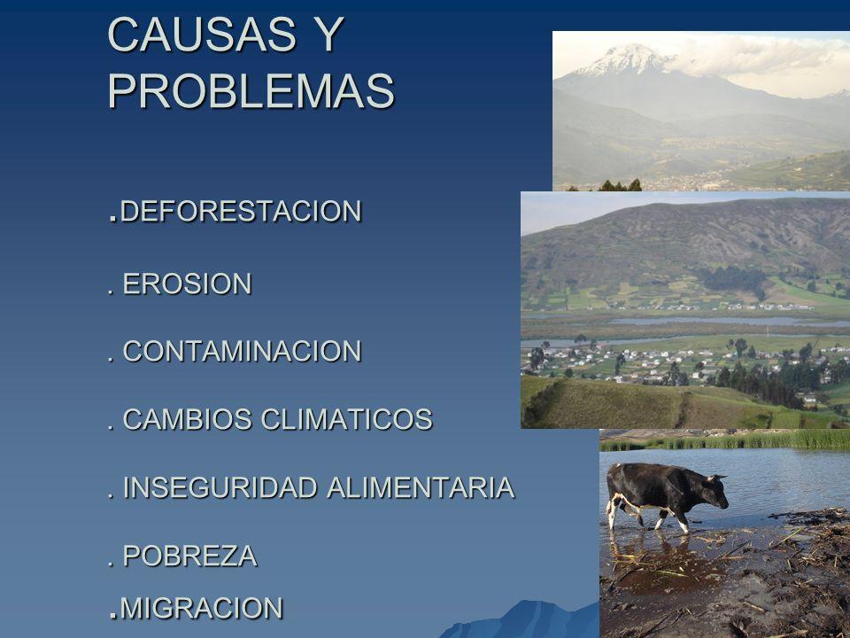 CAUSAS Y PROBLEMAS. DEFORESTACION. EROSION. CONTAMINACION. CAMBIOS CLIMATICOS. INSEGURIDAD ALIMENTARIA. POBREZA. MIGRACION