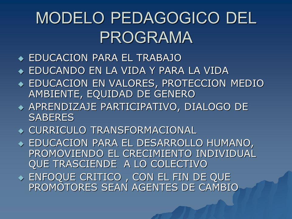 COMO FUNCIONA EL PROGRAMA BAJO LA MODALIDAD DE ESTUDIO A DISTANCIA BAJO LA MODALIDAD DE ESTUDIO A DISTANCIA CON EL USO DE MODULOS (TEXTOS IMPRESOS Y MEDIO MAGNETICO, AYUDAS VIRTUALES ) CON EL USO DE MODULOS (TEXTOS IMPRESOS Y MEDIO MAGNETICO, AYUDAS VIRTUALES ) ENCUENTROS QUINCENALES ENCUENTROS QUINCENALES TRABAJO PARTICIPATIVO TRABAJO PARTICIPATIVO