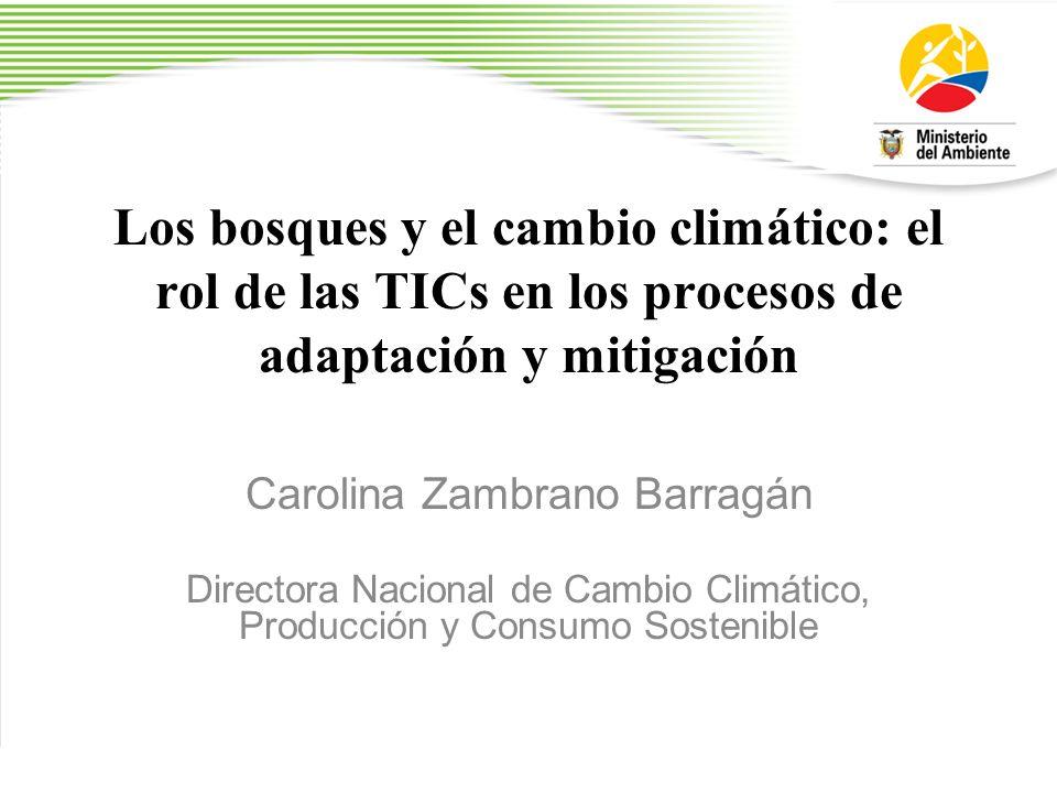 Los bosques y el cambio climático: el rol de las TICs en los procesos de adaptación y mitigación Carolina Zambrano Barragán Directora Nacional de Camb