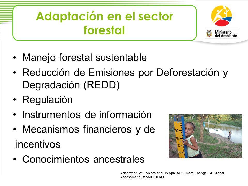 Manejo forestal sustentable Reducción de Emisiones por Deforestación y Degradación (REDD) Regulación Instrumentos de información Mecanismos financiero