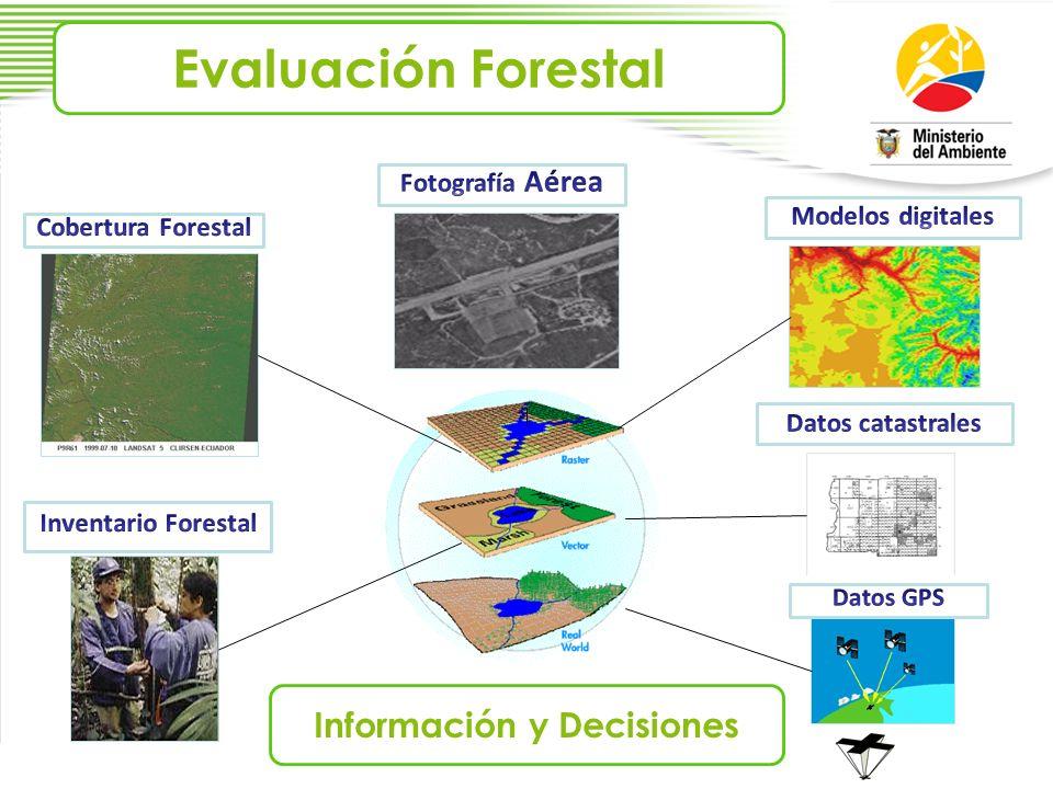 Evaluación Forestal Información y Decisiones