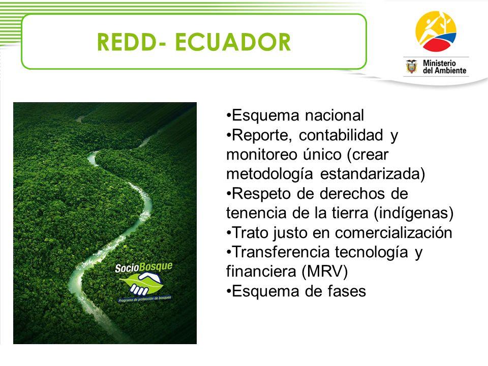 REDD- ECUADOR Esquema nacional Reporte, contabilidad y monitoreo único (crear metodología estandarizada) Respeto de derechos de tenencia de la tierra