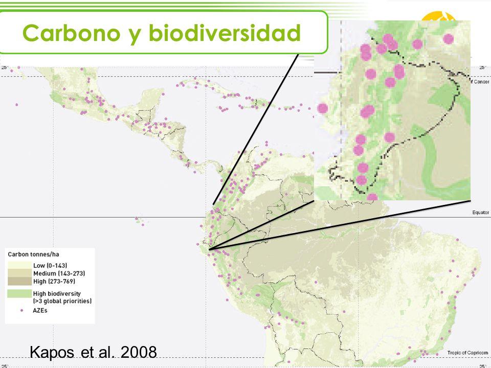 Kapos et al. 2008 Carbono y biodiversidad
