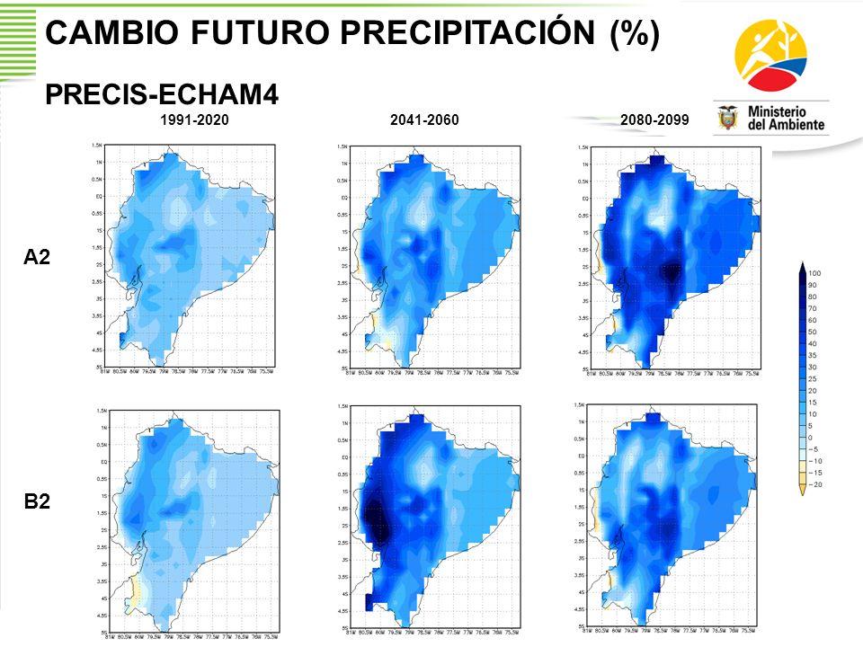 CAMBIO FUTURO PRECIPITACIÓN (%) PRECIS-ECHAM4 1991-20202041-20602080-2099 A2 B2