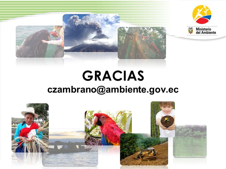 GRACIAS czambrano@ambiente.gov.ec