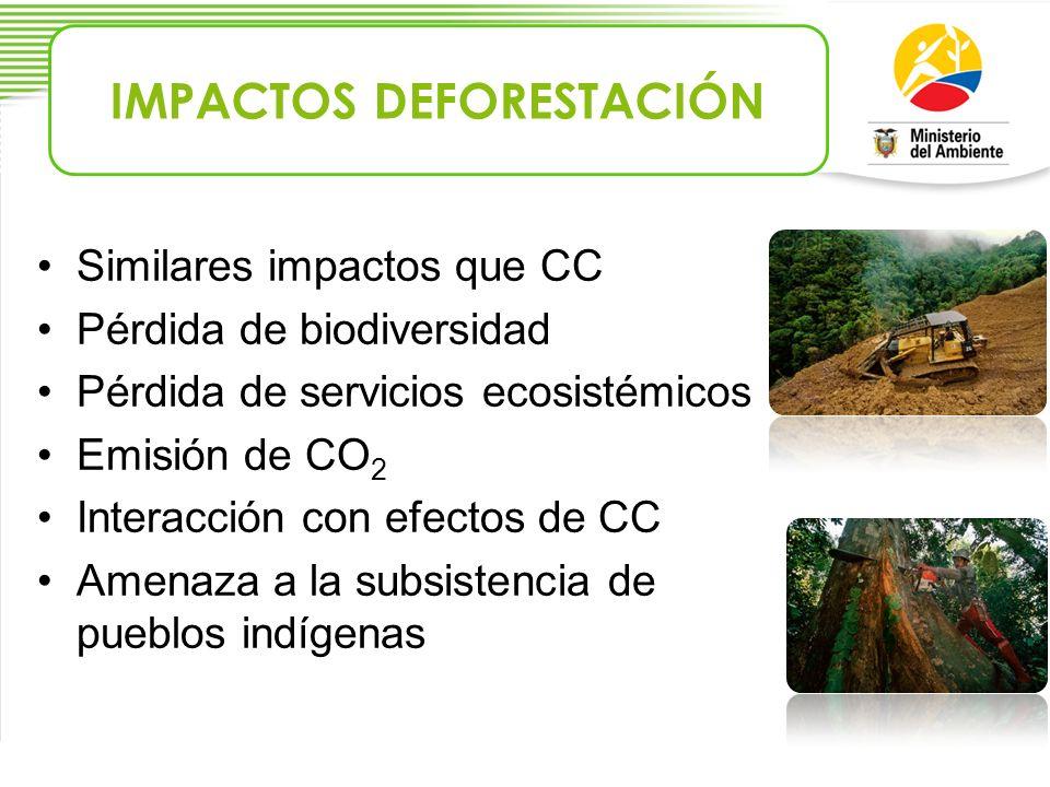 Similares impactos que CC Pérdida de biodiversidad Pérdida de servicios ecosistémicos Emisión de CO 2 Interacción con efectos de CC Amenaza a la subsi
