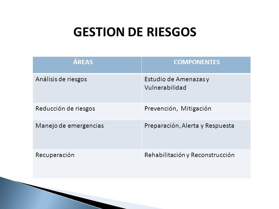 ÁREAS COMPONENTES Análisis de riesgosEstudio de Amenazas y Vulnerabilidad Reducción de riesgosPrevención, Mitigación Manejo de emergenciasPreparación,