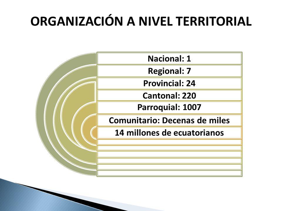 Nacional: 1 Regional: 7 Provincial: 24 Cantonal: 220 Parroquial: 1007 Comunitario: Decenas de miles 14 millones de ecuatorianos ORGANIZACIÓN A NIVEL T