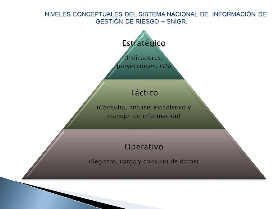 Estratégico (Indicadores, proyecciones, GIS) Táctico (Consulta, análisis estadístico y manejo de información) Operativo (Registro, carga y consulta de