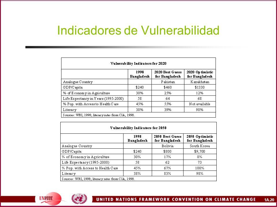 1A.20 Indicadores de Vulnerabilidad