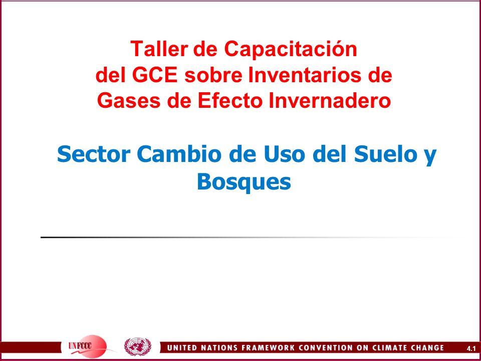 4.1 Taller de Capacitación del GCE sobre Inventarios de Gases de Efecto Invernadero Sector Cambio de Uso del Suelo y Bosques