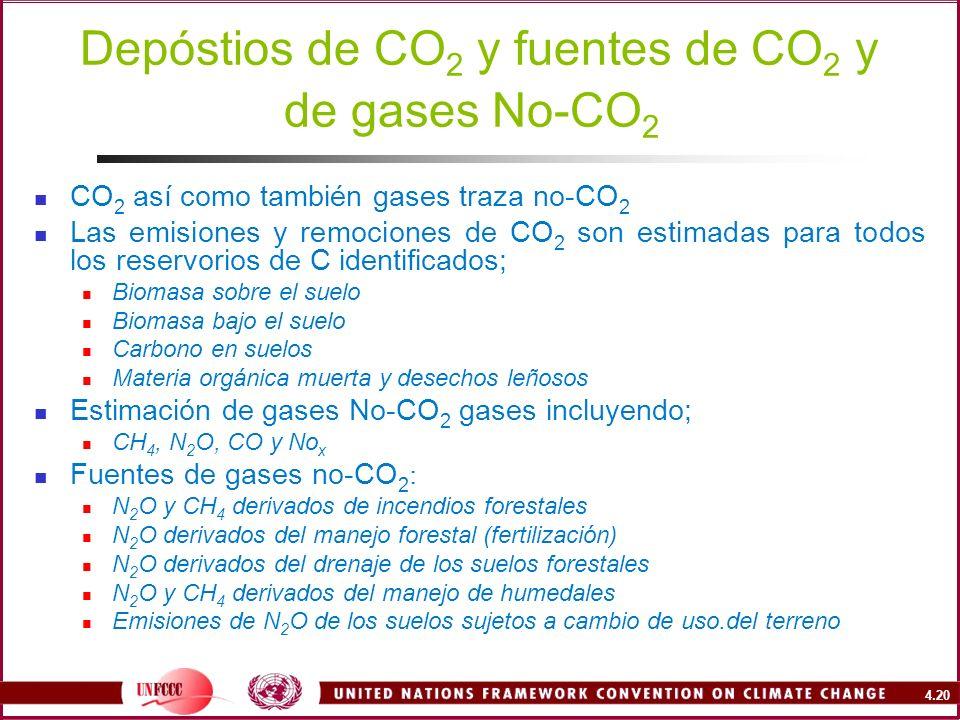 4.20 Depóstios de CO 2 y fuentes de CO 2 y de gases No-CO 2 CO 2 así como también gases traza no-CO 2 Las emisiones y remociones de CO 2 son estimadas