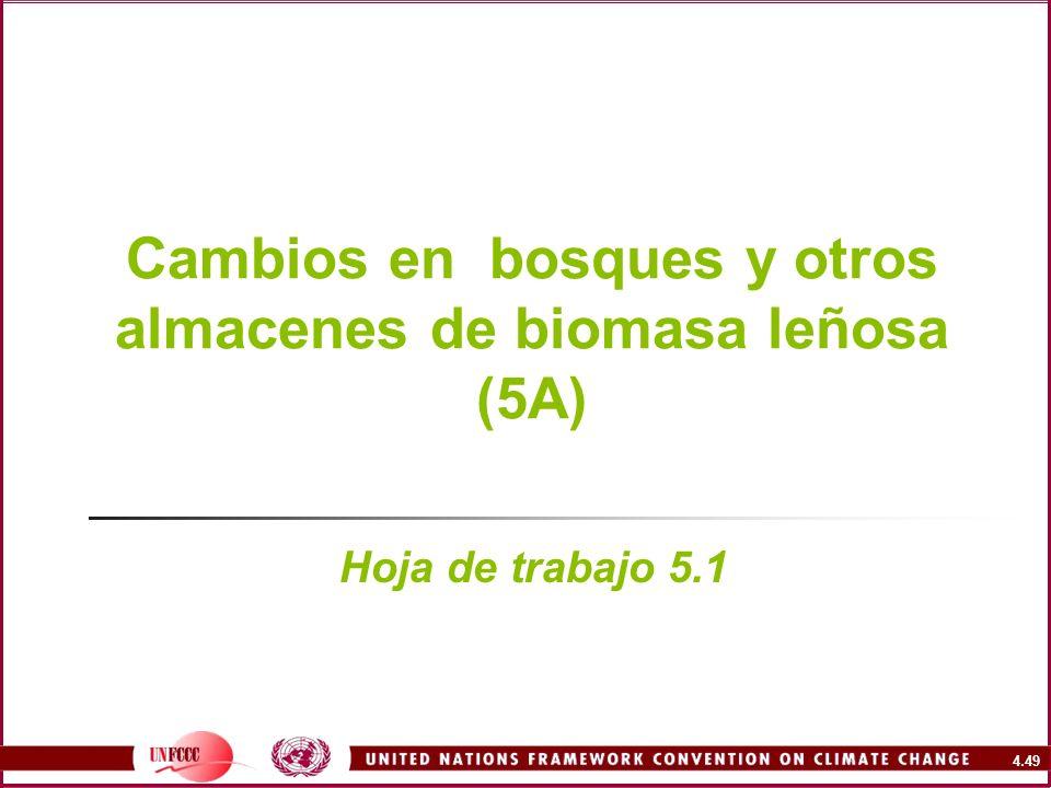 4.49 Cambios en bosques y otros almacenes de biomasa leñosa (5A) Hoja de trabajo 5.1