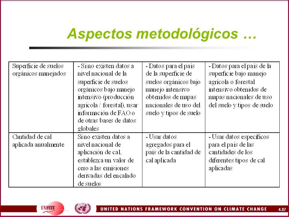 4.87 Aspectos metodológicos …