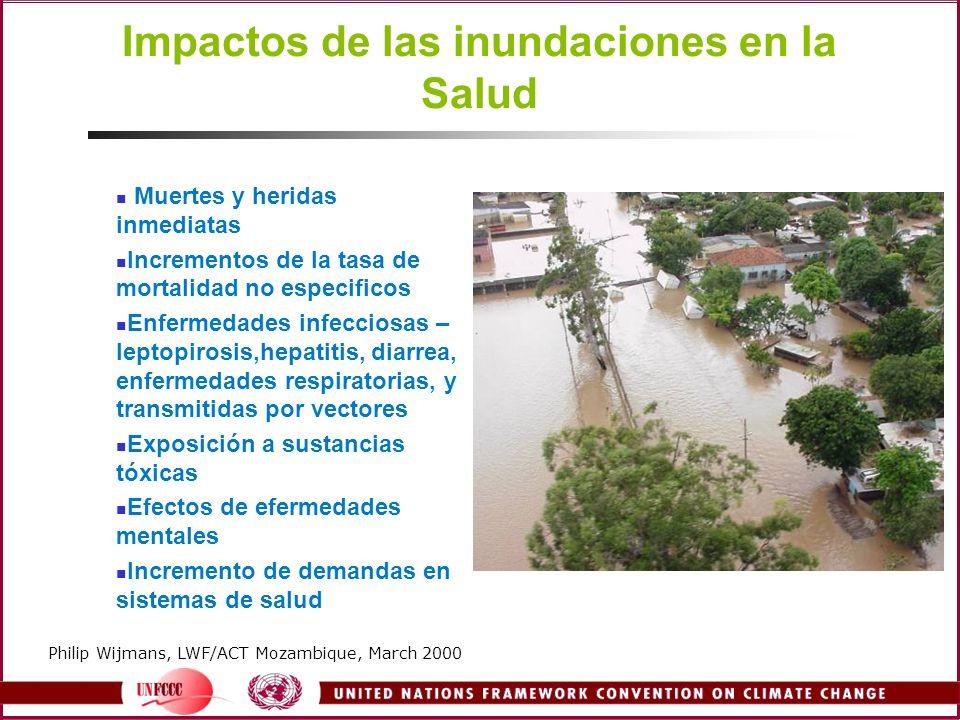 Impactos de las inundaciones en la Salud Muertes y heridas inmediatas Incrementos de la tasa de mortalidad no especificos Enfermedades infecciosas – l