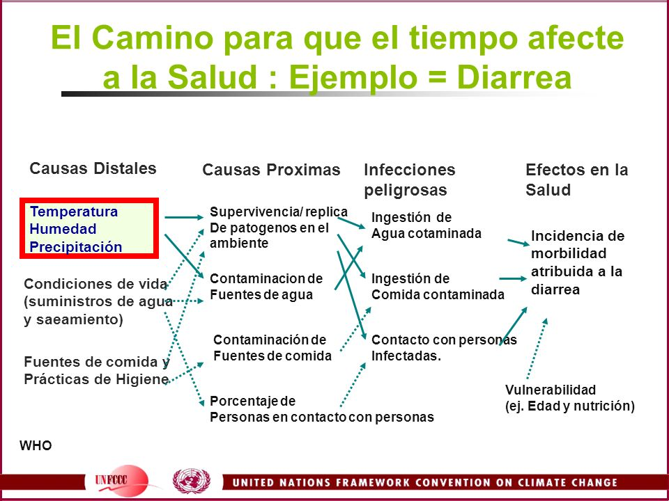 El Camino para que el tiempo afecte a la Salud : Ejemplo = Diarrea Temperatura Humedad Precipitación Causas Distales Causas ProximasInfecciones peligr