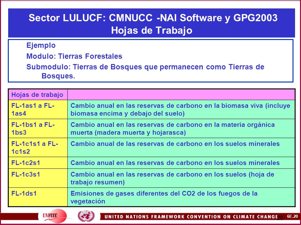 6E.20 20 Sector LULUCF: CMNUCC -NAI Software y GPG2003 Hojas de Trabajo Ejemplo Modulo: Tierras Forestales Submodulo: Tierras de Bosques que permanecen como Tierras de Bosques.