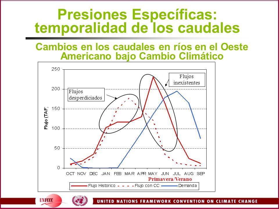 Presiones Específicas: temporalidad de los caudales Flujos desperdiciados Flujos inexistentes Primavera/Verano Cambios en los caudales en ríos en el O
