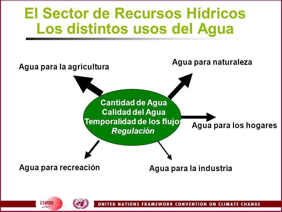El Sector de Recursos Hídricos Los distintos usos del Agua Cantidad de Agua Calidad del Agua Temporalidad de los flujos Regulación Agua para la agricu
