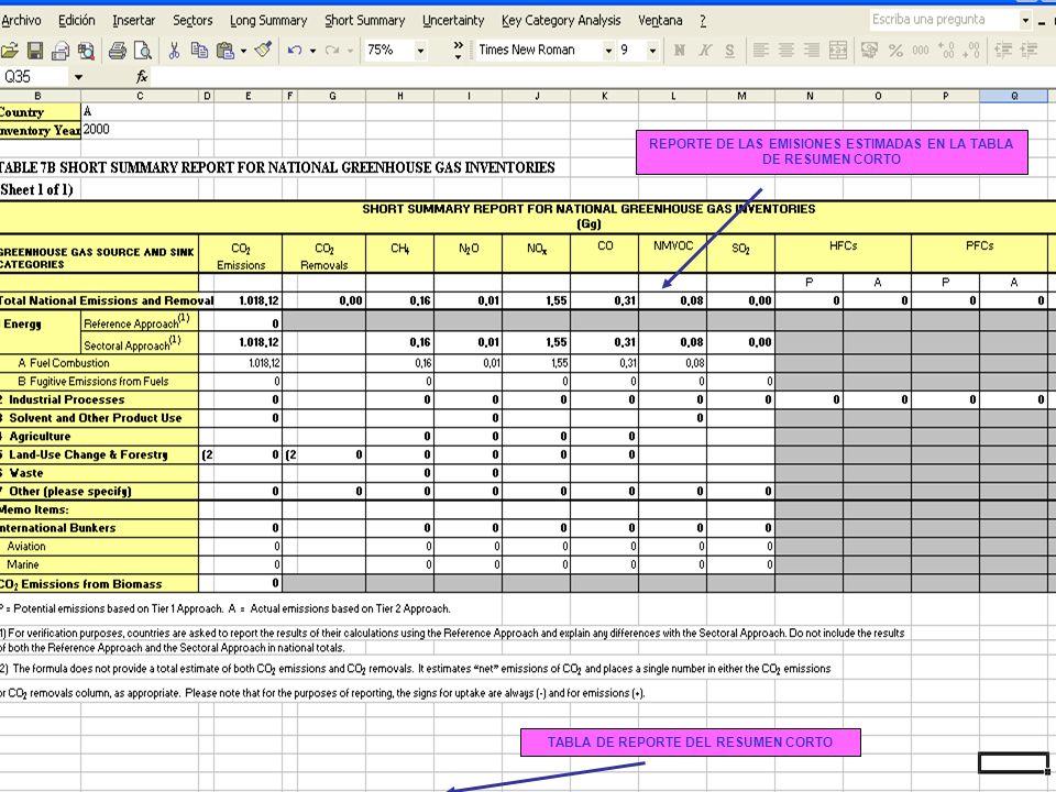 6B.31 31 REPORTE DE LAS EMISIONES ESTIMADAS EN LA TABLA DE RESUMEN CORTO TABLA DE REPORTE DEL RESUMEN CORTO