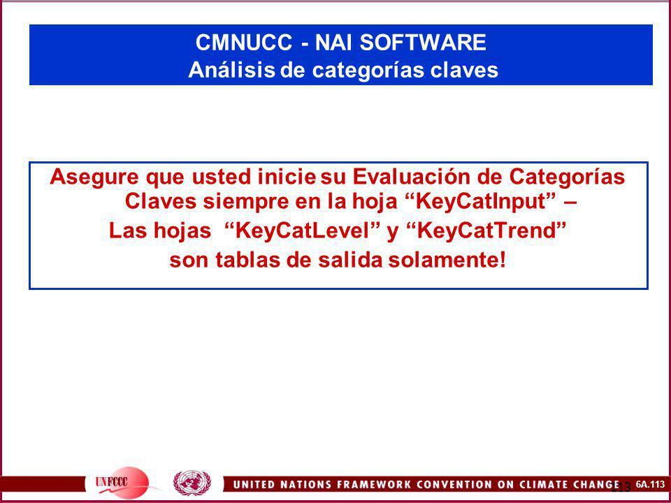 6A.113 113 CMNUCC - NAI SOFTWARE Análisis de categorías claves Asegure que usted inicie su Evaluación de Categorías Claves siempre en la hoja KeyCatIn