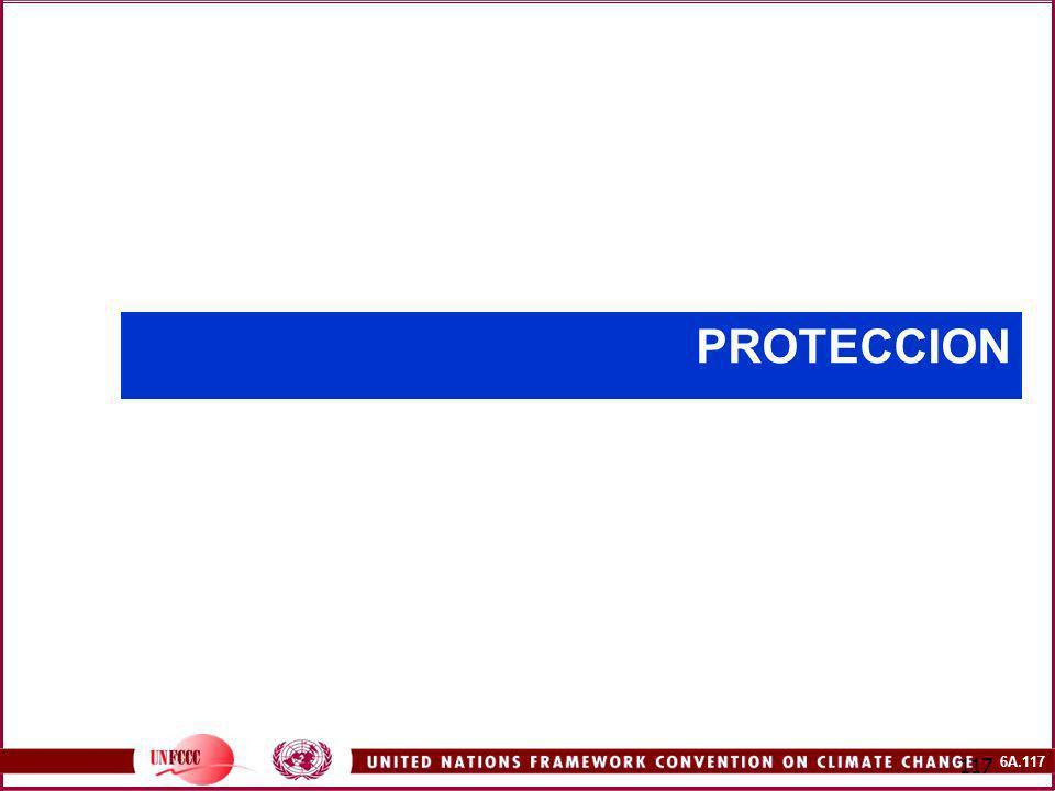 6A.117 117 PROTECCION