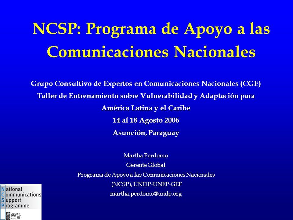 NCSP: Programa de Apoyo a las Comunicaciones Nacionales Grupo Consultivo de Expertos en Comunicaciones Nacionales (CGE) Taller de Entrenamiento sobre