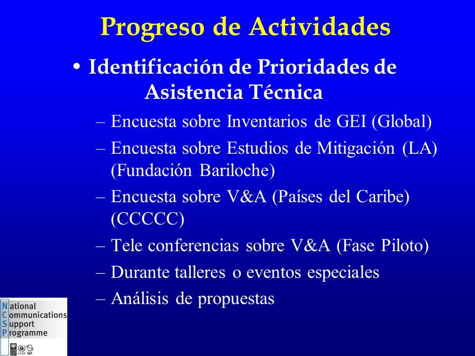 Progreso de Actividades –Encuesta sobre Inventarios de GEI (Global) –Encuesta sobre Estudios de Mitigación (LA) (Fundación Bariloche) –Encuesta sobre